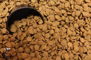 فروش آنلاین غذای خشک سگ