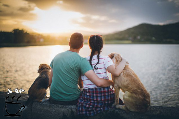 فواید داشتن حیوان خانگی